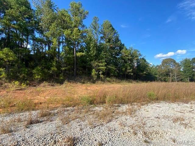 2 Brant Ward Road, COALING, AL 35453 (MLS #146615) :: The Gray Group at Keller Williams Realty Tuscaloosa