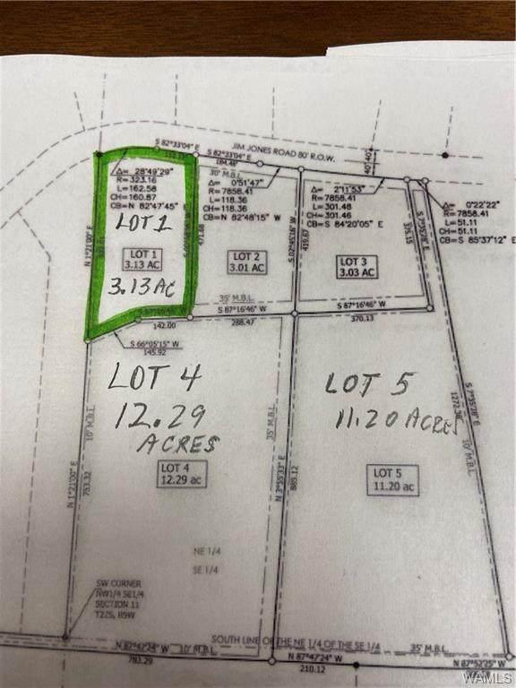 Lot 1 Jim Jones Road, COTTONDALE, AL 35453 (MLS #146690) :: The K|W Group