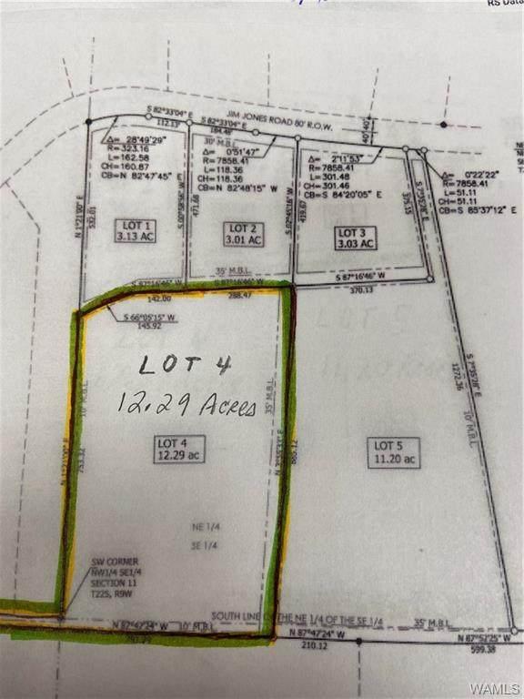 Lot 4 Jim Jones Road, COTTONDALE, AL 35453 (MLS #146691) :: The K|W Group