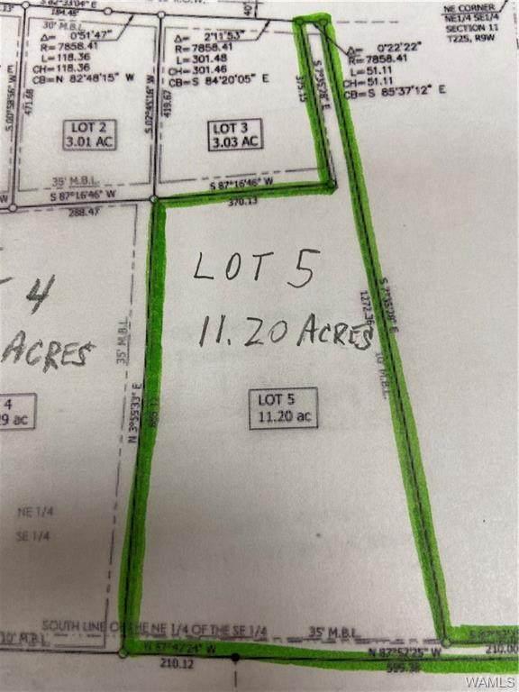 LOT 5 Jim Jones Road, COTTONDALE, AL 35453 (MLS #146692) :: The K|W Group
