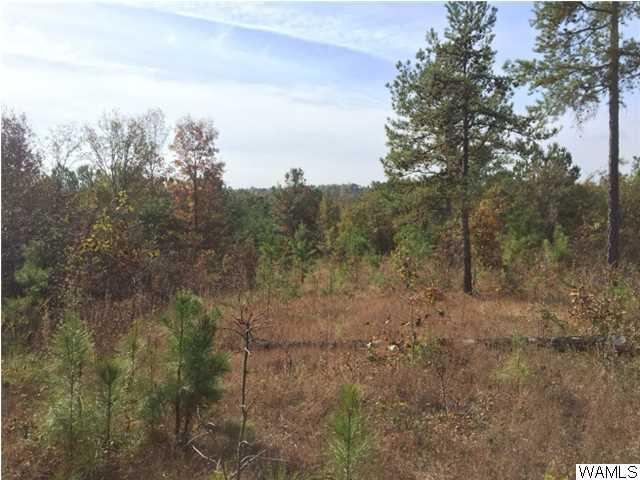 0 Highway 140, BUHL, AL 35466 (MLS #108872) :: The Advantage Realty Group