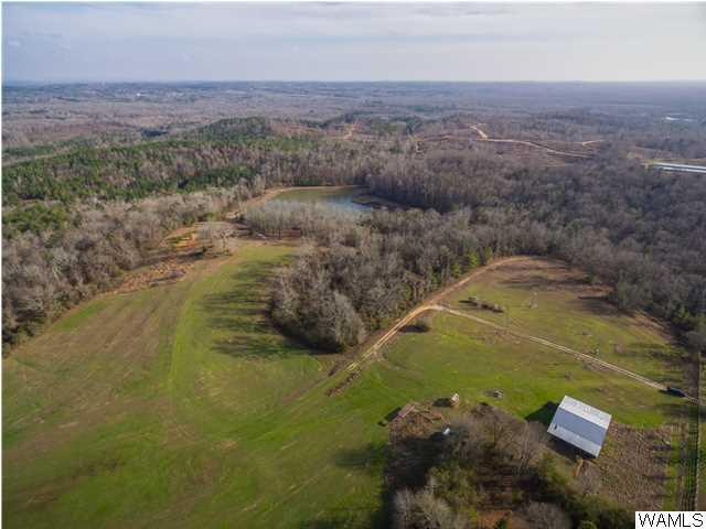12337 John Harless Road, ELROD, AL 35458 (MLS #109820) :: The Advantage Realty Group
