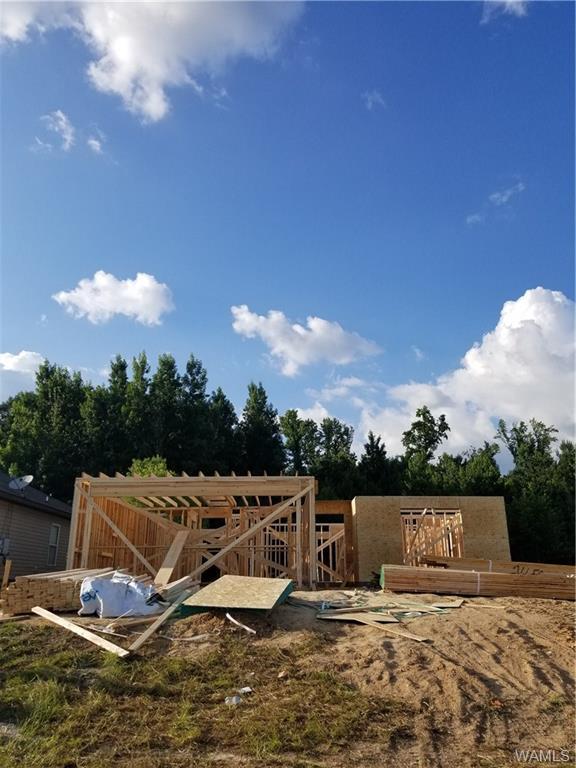 330 Prairie Field Drive, TUSCALOOSA, AL 35405 (MLS #127651) :: The Gray Group at Keller Williams Realty Tuscaloosa