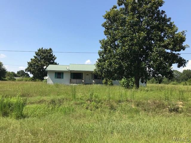996 County Rd 107, BOLIGEE, AL 35443 (MLS #128178) :: The Advantage Realty Group