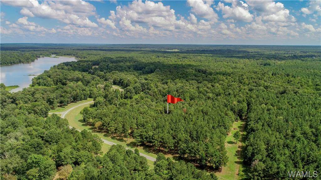152 Black Warrior Bay - Photo 1