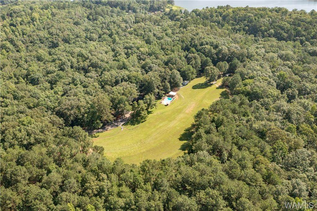 10855 House Bend Road - Photo 1