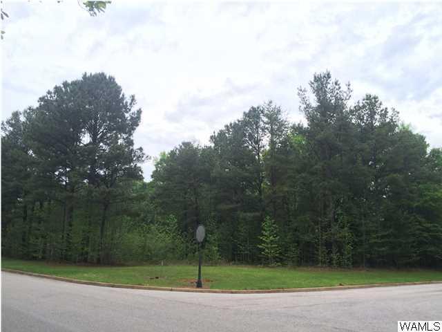 6809 Waterfront Drive, TUSCALOOSA, AL 35406 (MLS #101207) :: The Gray Group at Keller Williams Realty Tuscaloosa
