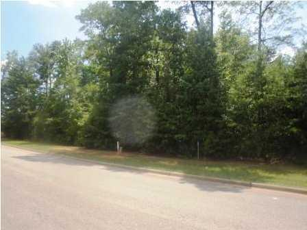 6638 Waterfront Drive #76, TUSCALOOSA, AL 35406 (MLS #102632) :: Hamner Real Estate