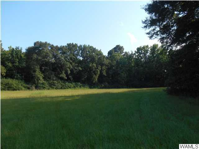 13820 Riverbend Road 49 & 50, MOUNDVILLE, AL 35474 (MLS #107735) :: The Advantage Realty Group