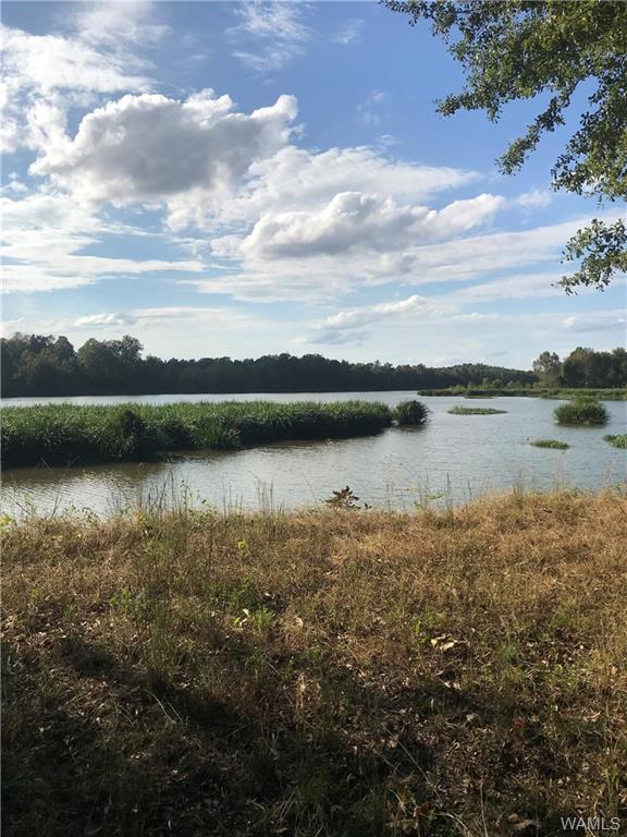 10 Black Warrior Bay, AKRON, AL 36776 (MLS #130327) :: The Gray Group at Keller Williams Realty Tuscaloosa