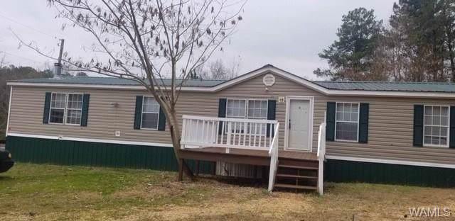 11163 Ben Clements Road, NORTHPORT, AL 35475 (MLS #133514) :: The Gray Group at Keller Williams Realty Tuscaloosa