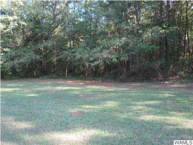 480 Woodland Parkway, MOUNDVILLE, AL 35474 (MLS #103309) :: The K|W Group