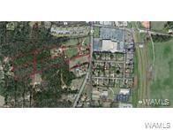 0 Old Greensboro Road, TUSCALOOSA, AL 35405 (MLS #121522) :: Wes York Team