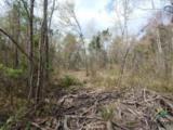 TBD 20 Acres Periwinkle Road - Photo 1