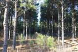TBD Fm 2263 & Bluebell Road Tract 3 - Photo 21