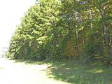 16393 Hwy 31 Lot-A - Photo 14