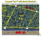 16393 Hwy 31 Lot-A - Photo 29