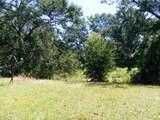13593 County Road 472 - Photo 15