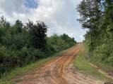 TBD County Road 394 - Photo 3