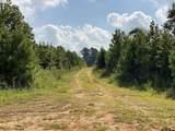 TBD County Road 394 - Photo 6
