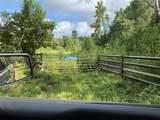 TBD County Road 394 - Photo 7