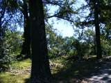 13593 County Road 472 - Photo 3