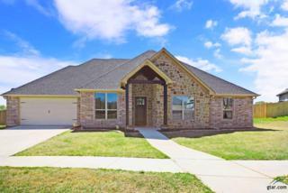3003 Starr Court, Bullard, TX 75757 (MLS #10079117) :: RE/MAX Professionals - The Burks Team