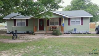 14051 Joe B Fulgham Cr, Brownsboro, TX 75756 (MLS #10080530) :: RE/MAX Professionals - The Burks Team