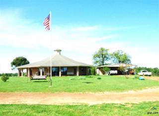 659 County Road 4365, Mt Pleasant, TX 75455 (MLS #10080719) :: RE/MAX Professionals - The Burks Team