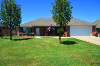 1151 N. 3rd Street, Wills Point, TX 75169 (MLS #10080784) :: RE/MAX Professionals - The Burks Team