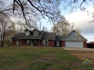282 Private Rd 4673, Pittsburg, TX 75686 (MLS #10078684) :: RE/MAX Professionals - The Burks Team