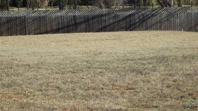 Lot 14 Kathryn, Mt Pleasant, TX 75455 (MLS #10040417) :: RE/MAX Professionals - The Burks Team