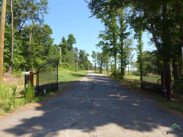 TBD-Lot 10 Mustang Drive, Longview, TX 75605 (MLS #10060180) :: The Wampler Wolf Team