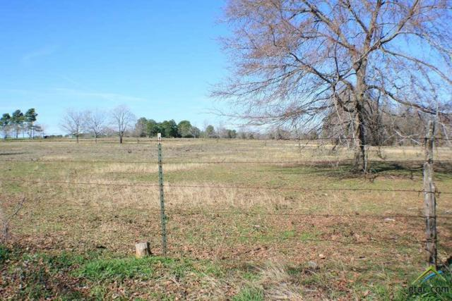 TBD Cr 177, Bullard, TX 75757 (MLS #10061259) :: The Wampler Wolf Team