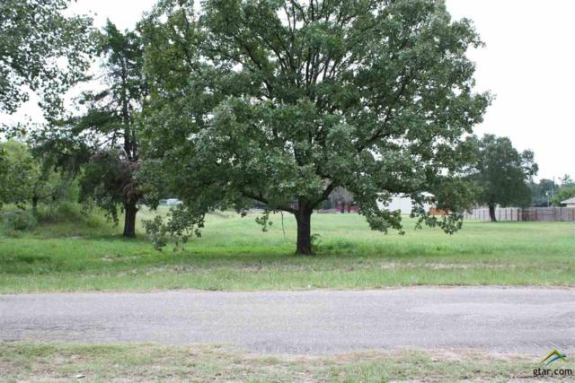 Lot 18R Lakewood Trail, Canton, TX 75103 (MLS #10061430) :: RE/MAX Professionals - The Burks Team
