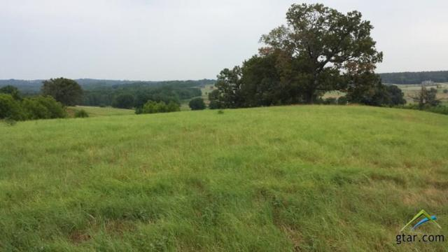 5146 Saddle Ridge Court, Athens, TX 75752 (MLS #10062077) :: The Wampler Wolf Team