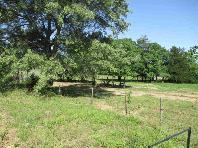 Tract 1 Cr 452, Mineola, TX 75773 (MLS #10067822) :: The Wampler Wolf Team