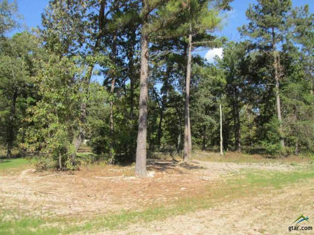 Lot 24 Deer Haven Dr, Gladewater, TX 75647 (MLS #10074741) :: The Wampler Wolf Team