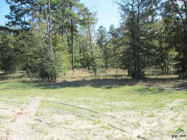 Lot 36 Little Hickory Dr, Gladewater, TX 75647 (MLS #10074744) :: The Wampler Wolf Team