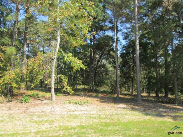 Lot 25 Deer Haven Dr, Gladewater, TX 75647 (MLS #10074784) :: The Wampler Wolf Team