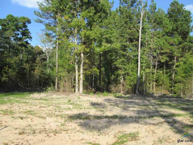 Lot 33 Little Hickory Dr, Gladewater, TX 75647 (MLS #10074788) :: The Wampler Wolf Team