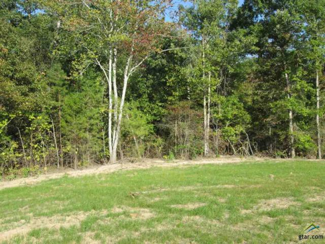 Lot 34 Little Hickory Dr, Gladewater, TX 75647 (MLS #10074789) :: The Wampler Wolf Team