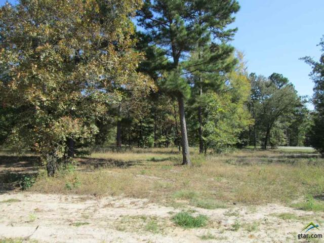 Lot 23 Willow Creek Ranch Rd, Gladewater, TX 75647 (MLS #10074791) :: The Wampler Wolf Team
