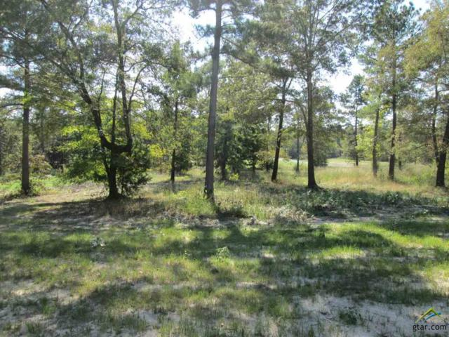 Lot 29 Willow Creek Ranch Rd, Gladewater, TX 75647 (MLS #10074795) :: The Wampler Wolf Team