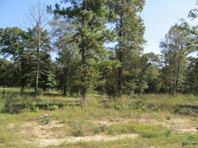 Lot 30 Willow Creek Ranch Rd, Gladewater, TX 75647 (MLS #10074796) :: The Wampler Wolf Team