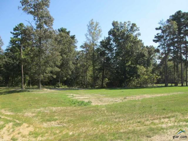Lot 31 Willow Creek Ranch Rd, Gladewater, TX 75647 (MLS #10074798) :: The Wampler Wolf Team