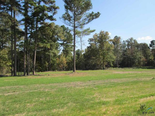 Lot 32 Willow Creek Ranch Rd, Gladewater, TX 75647 (MLS #10074799) :: The Wampler Wolf Team