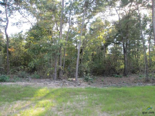 Lot 37 Little Hickory Dr, Gladewater, TX 75647 (MLS #10074800) :: The Wampler Wolf Team