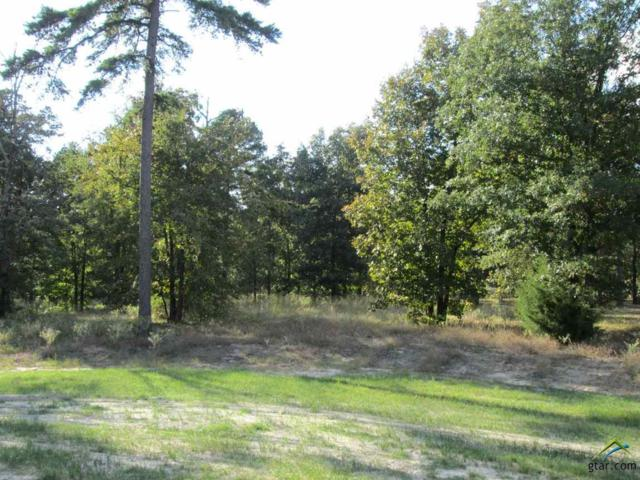 Lot 38 Willow Creek Ranch Rd, Gladewater, TX 75647 (MLS #10074801) :: The Wampler Wolf Team