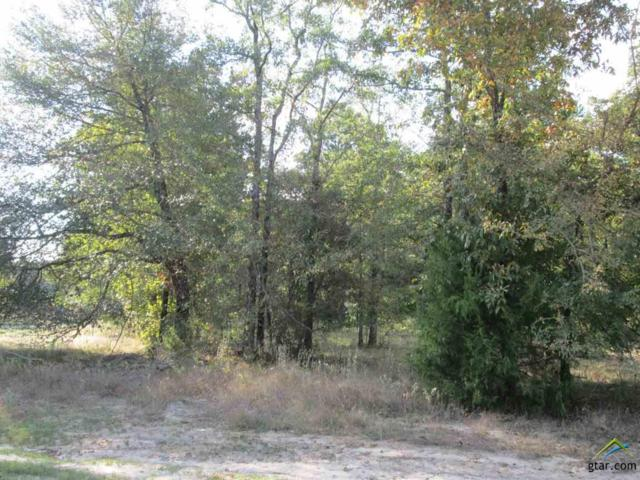 Lot 39 Willow Creek Ranch Rd, Gladewater, TX 75647 (MLS #10074802) :: The Wampler Wolf Team